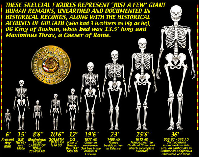 Nephilim - The giants of Old & their different sizes throughout history