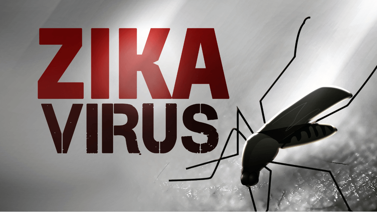 zika virus graphic 1_1454420946202_787363_ver1.0
